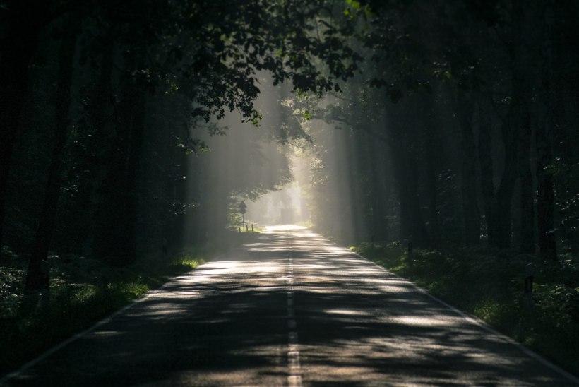 AVESTA | Esmaspäev, 16. september: on algse ja igavese valguse päev