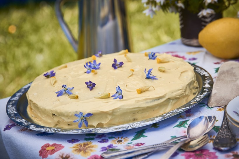 Tervislikud koogid, mis maitsevad suisa patuselt hästi!