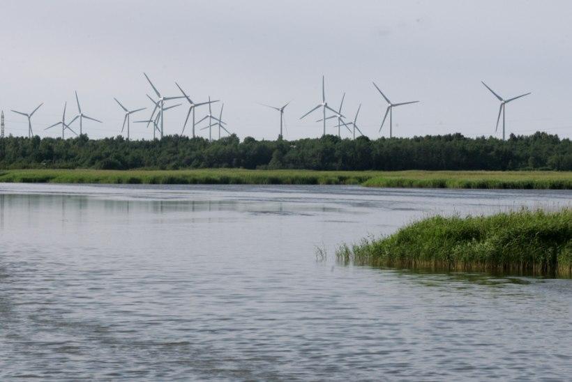 Hiidlasi kutsutakse tuulepargi vastu võitlema