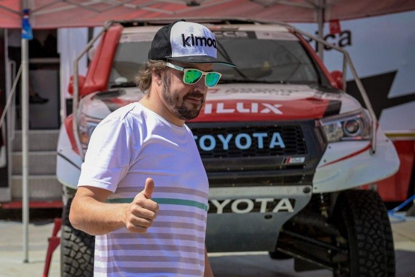 Fernando Alonso rallidebüüt osutus õudusunenäoks