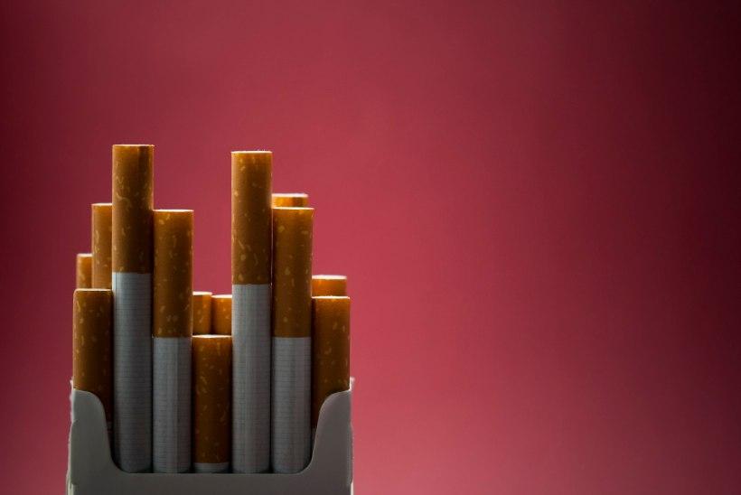 Rahandusministeerium plaanib tubakaaktsiisi tõusu takistada