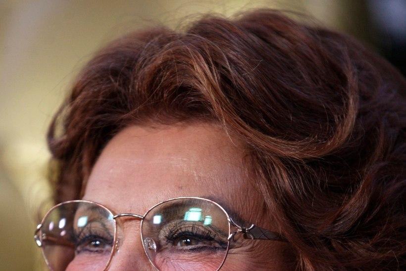MÄLUMÄNG   Palju õnne, Sophia Loren!