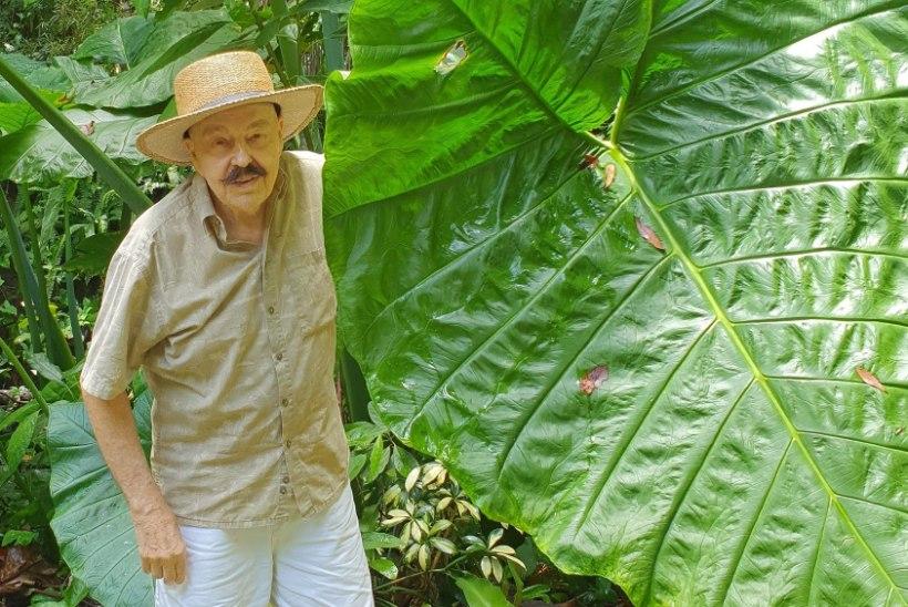FLORIDAS ELAV JÜRI TOOMEPUU: tundub, et orkaan Dorian mind tülitama ei tule