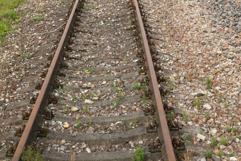 Tõnis Erilaiu lehesaba | Kuidas riigivanema rong üheksa korda kraavis käis