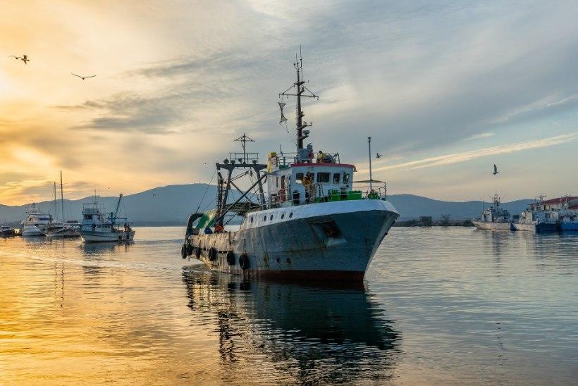 Teadlased: tehnoloogia topeldab kiiresti kalurite võimekust