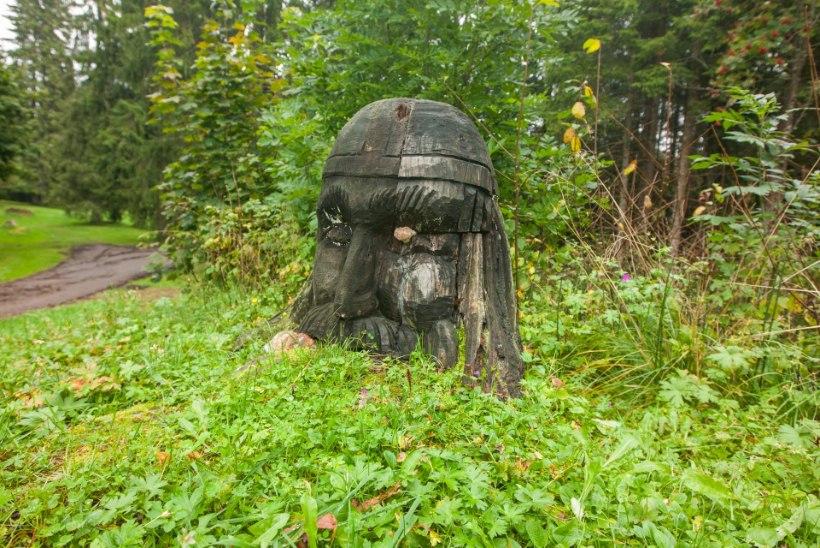 MINEVIKUHETK | 21. september: Madisepäeva lahingus langesid mitmed eestlaste tähtsamad vanemad