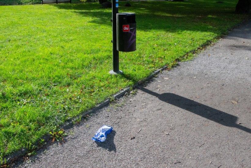 Maailmakoristuspäeval Snelli pargis: misasi see veel siin on?