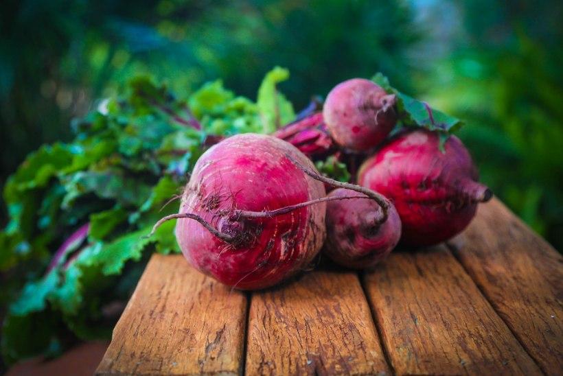 Tõeline imetaim: kõigile tuttav punapeet, mis pakatab tervislikkusest