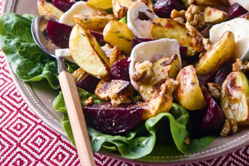 NII HÕRK SÜGIS! 10 tummist ja maitseküllast retsepti, millega looduse küpsemist nautida