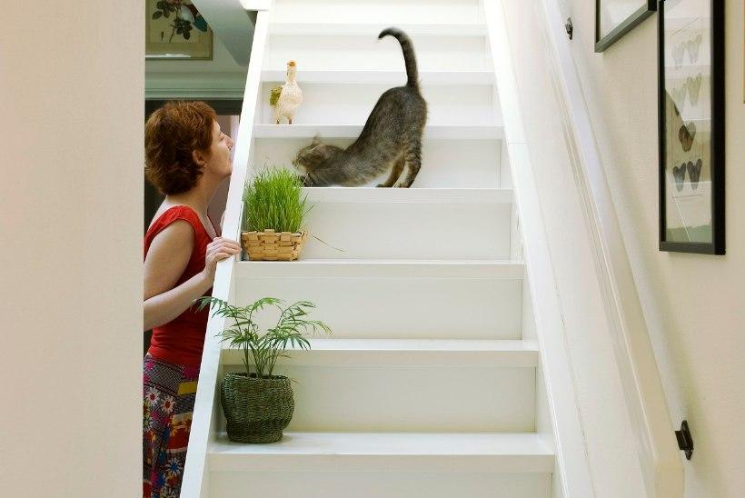Nii väldid suuremaid möödapanekuid: 5 tähtsat nõuannet, kuidas planeerida koju sobiv trepp