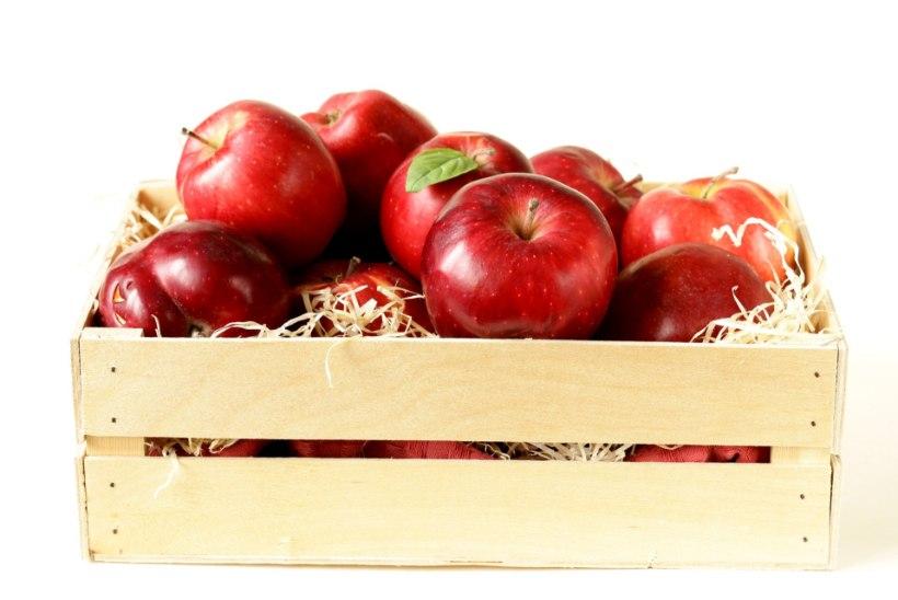 HEA TEADA   Õigesti korjates ja säilitades saad koduõunu süüa kevadeni