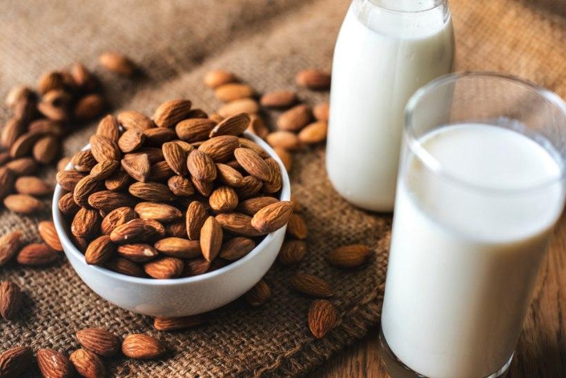BIOKEEMIK SOOVITAB: piim on soodsaim viis hoida end tervena!