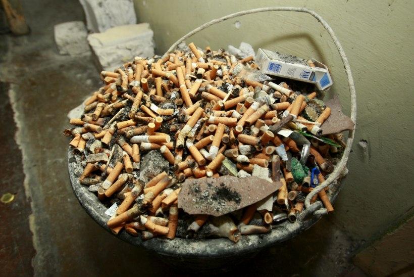 PANGE PÕLEMA: põrgulikult kuluka sigaretikonide taaskasutamise asemel tuleb need hävitada