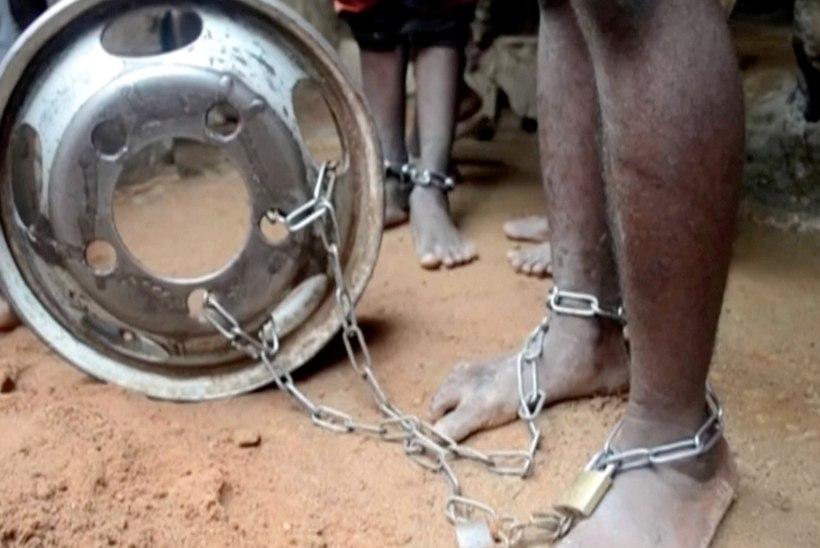 ÕUDUSTE KOOL: Nigeerias pääses pea 500 poissi ja noorukit piinajate käest