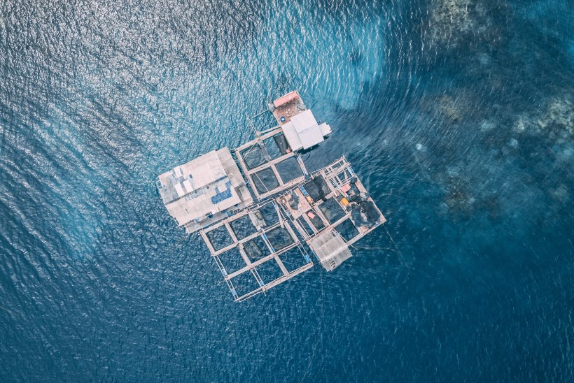 Taani tõmbab merekalakasvandustele pidurit