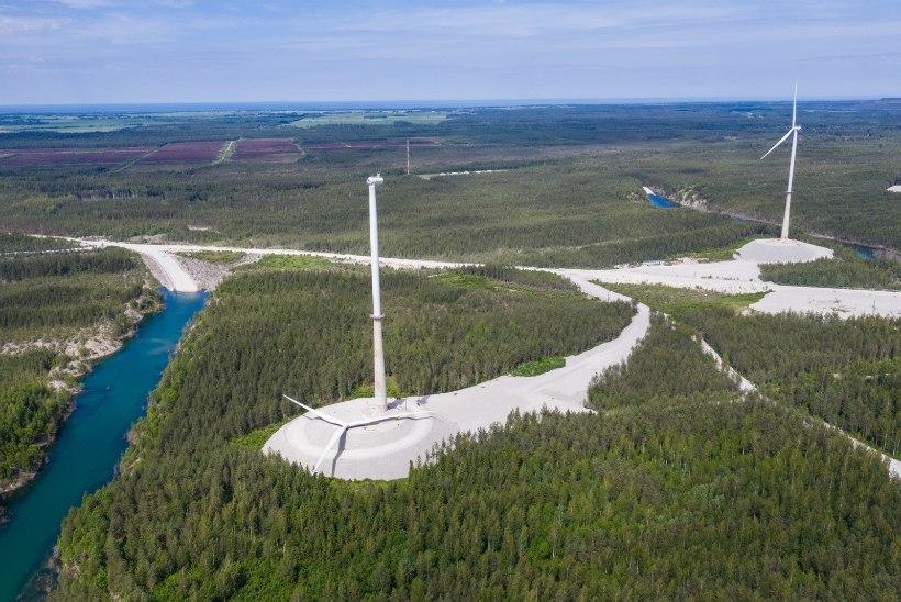 TSIRKUS JÄTKUB: tuulikupüstitajad Sõnajalad andsid riigile terava vastulöögi