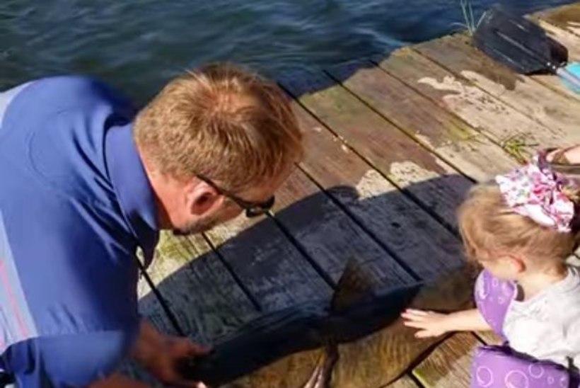 VIDEO | 4aastane tüdruk püüdis multikaõngega 15kilose kala