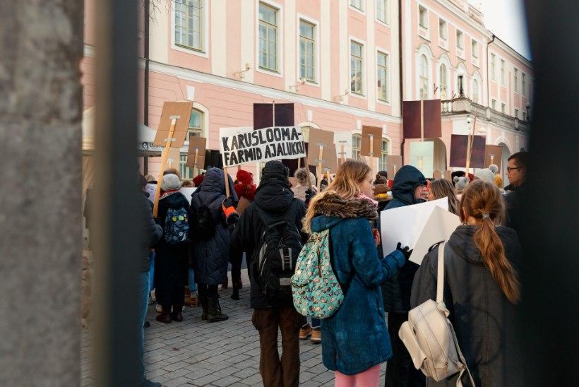 GALERII | Vaata, mis toimus karusnahavastaste meeleavaldusel!