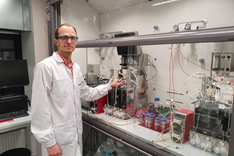 Prügi toorainena kasutav biotööstus võib päästa Eesti 100 miljoni euro suurusest trahvist