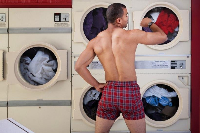 Lugejakiri: kes peaks triikima mehe aluspesu?
