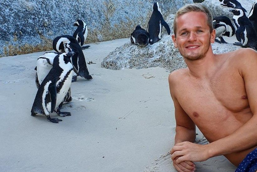 VAHVA: Eesti tippujuja imetles põrgukuumas Aafrikas pingviine