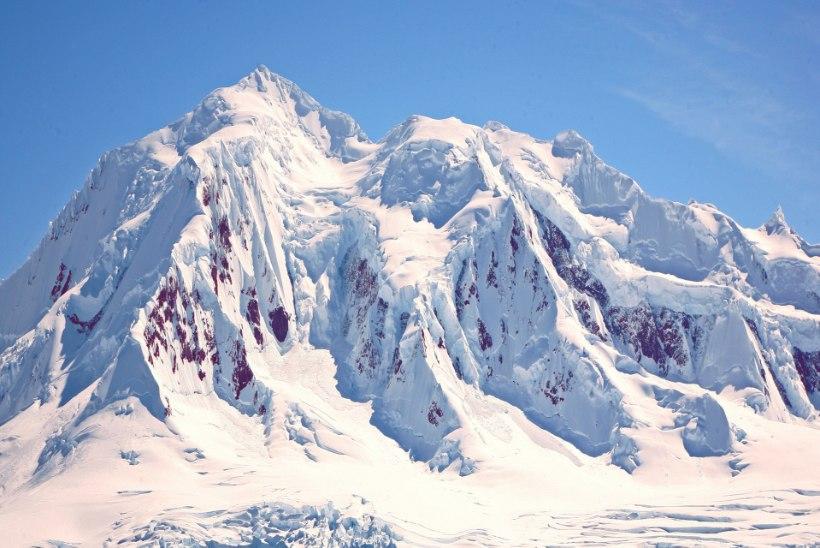 Rännumees Peeter Vähi: ainus täiesti eriline paik siin planeedil on Antarktika