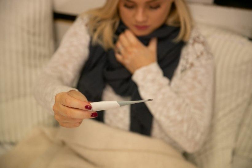 KÕRGHOOAEG ON EES: praegu ringleb kolm gripiviiruse tüüpi