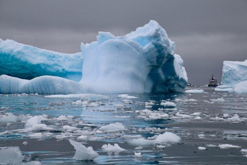 Kuidas tavaturist Antarktikasse saab? Kui rahakott lubab, mine või lennukiga