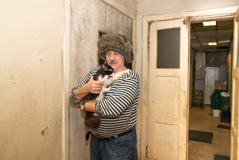 JÕULUDE EEL KODUTUKS! Endise nakkushaigla kõduhoone elanik leidis uue pelgupaiga endale, kassile ja unistustele
