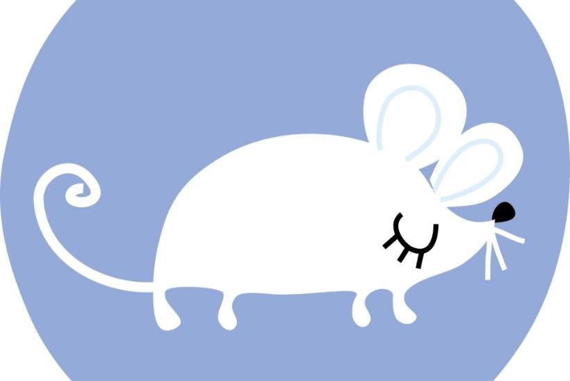 HIINA HOROSKOOP 2020 | Rott võib suurendada sissetulekut