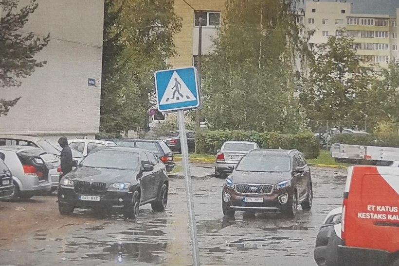 VIDEO   NARKOÄRIKAD PAANIKAS: Tallinnas läks autost kaduma viis kilo uimasteid