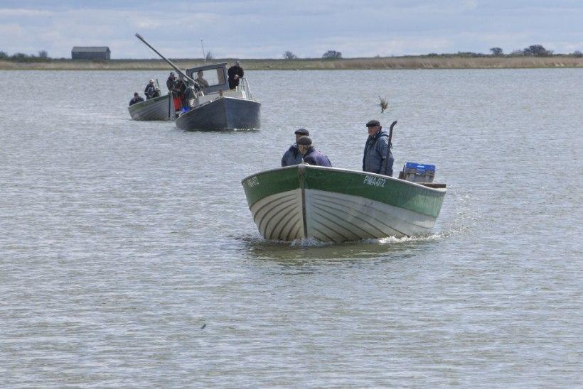 ELU LÄHEB LIHTSAMAKS! Kalurid loodavad, et saavad peagi hõlpsamalt biolisandita kütust
