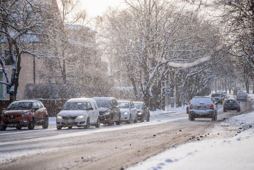 Lugejakiri: parim talv ongi ilma lumeta!
