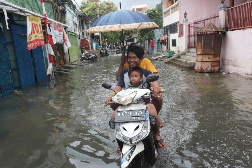 Indoneesia pealinn vaevleb üleujutuse käes, vähemalt 60 inimest on hukkunud
