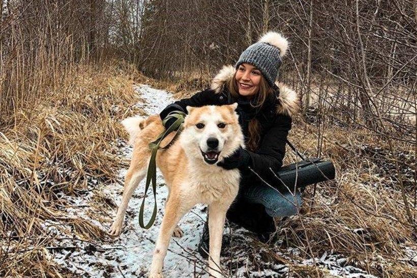 Varjupaiga koeraga jalutama minek võib olla ohtlik… ühel päeval viidki loomakese endale päriselt koju!
