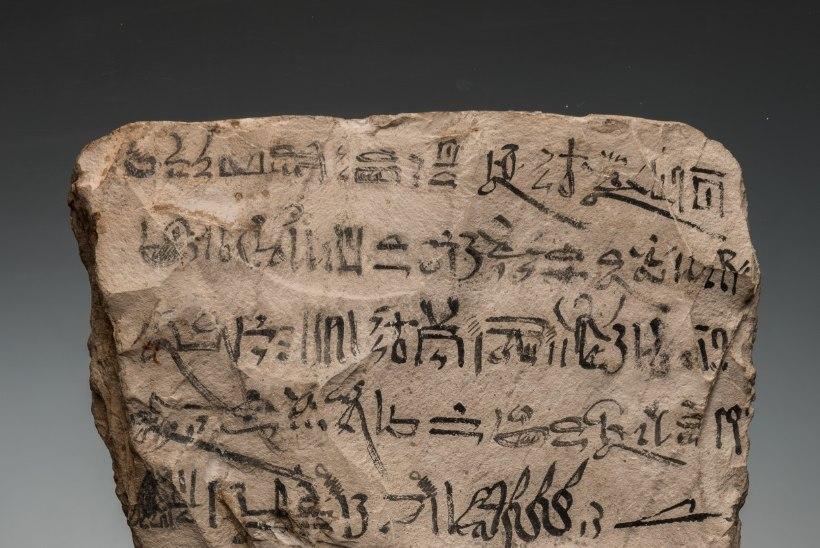 Mitmed tuhandete aastate vanused aarded on näitusesaalis esimest korda