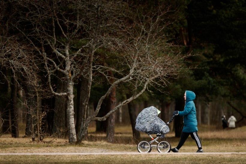 Tallinnas jäi auto alla lapsevankrit lükanud naine