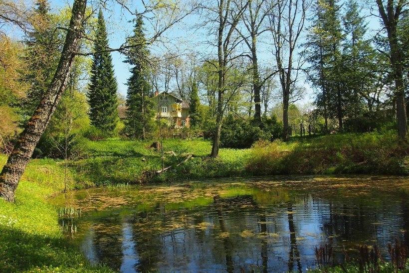 MINE METSA ASEMEL PARKI: kaheksa kaunist kohta, kus sügislehtede sahinal puid-põõsaid avastada