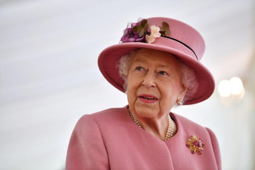 Tõnis Erilaiu lehesaba | Kuidas kuninganna puravikke sõi ja veini jõi
