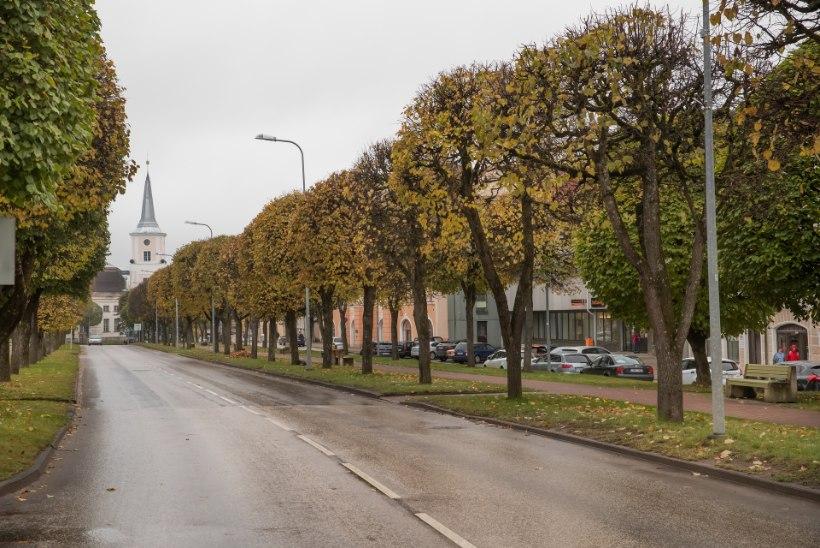 Mandri-Eesti palgavaeseima maakonna rahvas ei kiirusta teise samba raha välja võtma
