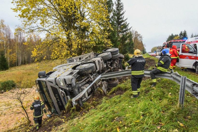 Soodomas sai metsaveoki avariis viga neli autot