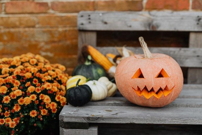 Kas tähistada halloween'i? Folklorist Reet Hiiemäe ärgitab süüvima iga püha päritolusse