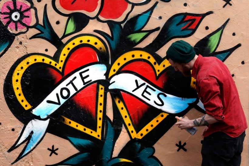 Referendumiaegne Eesti suursaadik Iirimaal: geiabielusid pooldasid kõik erakonnad ja vastastel polnud selgeid argumente