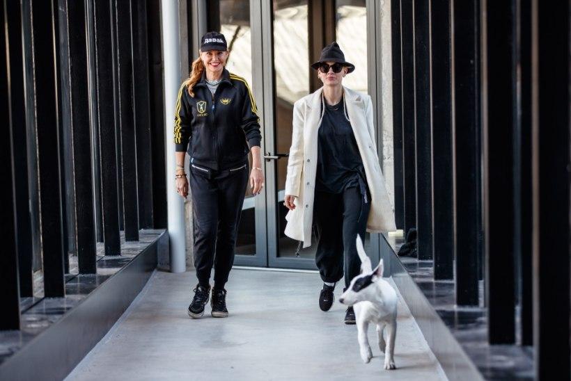 DROONITERROR: lennumasin tungis Anu Saagimi ja Marta Vaariku koduakende taha