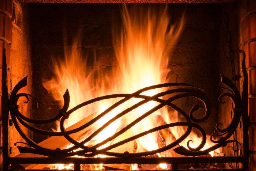 Miks on puitbriketiga kütmine nutikas valik?
