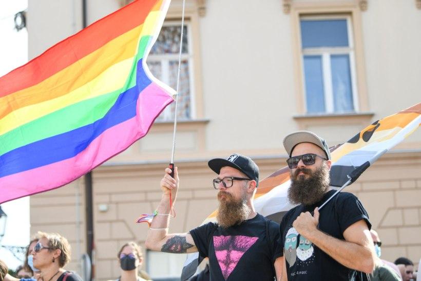 HÄÄLED KUULDAVAKS   Geimees: mõttetu on vaielda homofoobiga, kes peab mind hälvikuks
