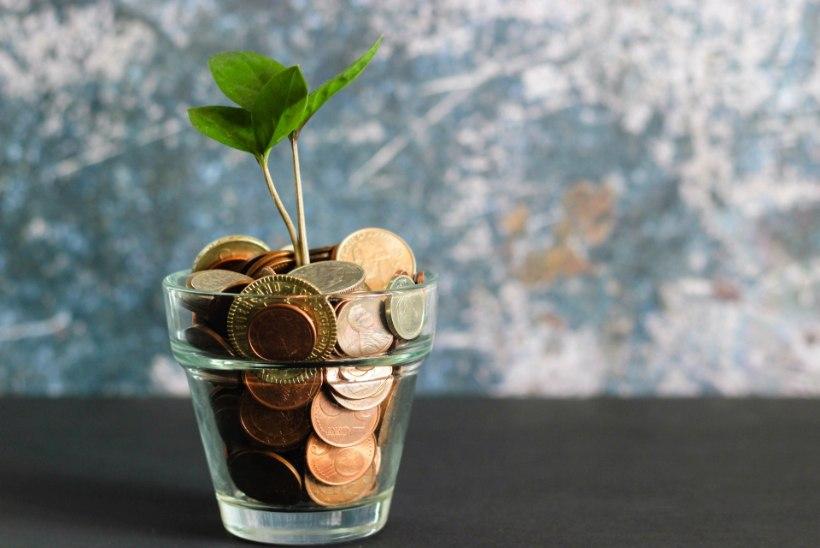 29 viisi säästmiseks! Keskkonnasõbralik eluviis aitab raha kokku hoida