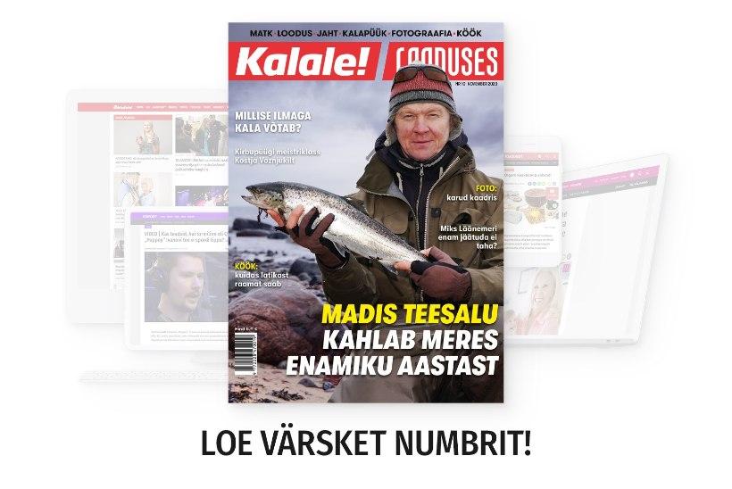 Ajakirja novembrinumber on ilmunud!