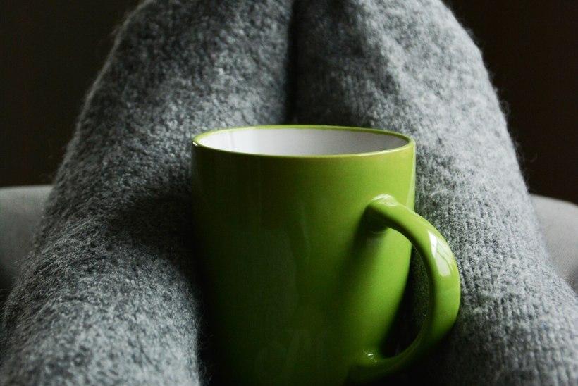 Plussid ja miinused: millist lisakütteseadet valida, et suvila või töökoda kiirelt soojaks saada?