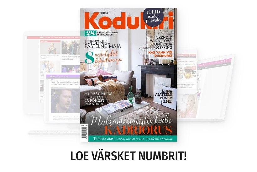 NOVEMBRIKUU KODUKIRI | Loe ajakirja ka veebis!